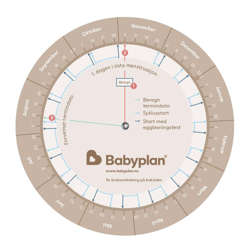 Babyplan Terminberegner